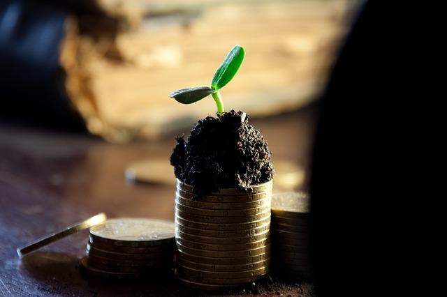 růst rostlink.jpg